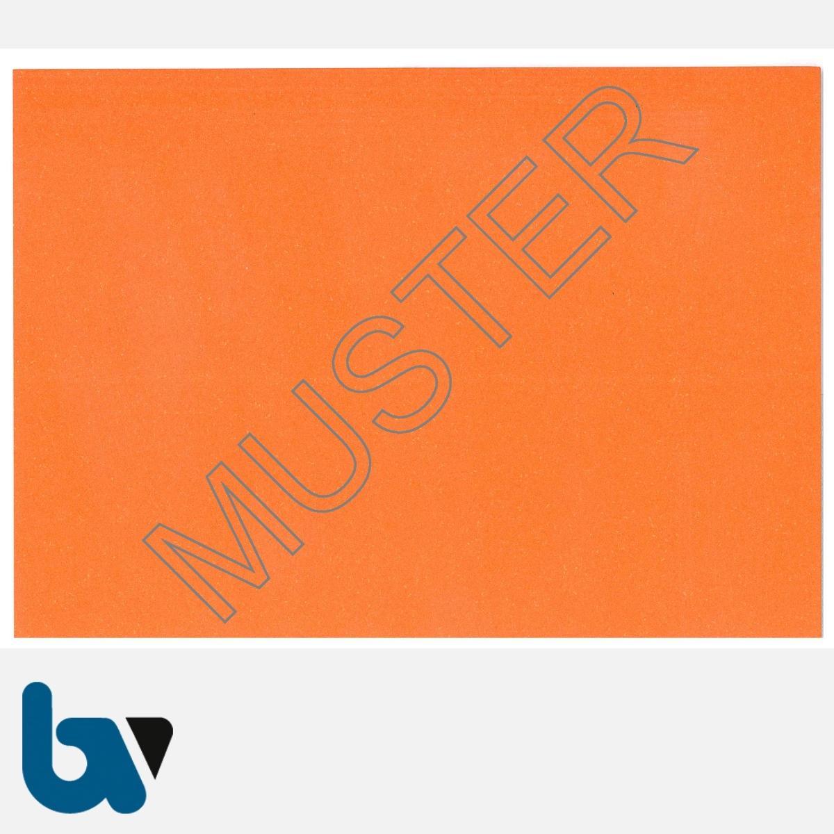 0/685-10 Parkausweis zur Ausnahmegenehmigung über Parkerleichterungen BRD orange Modell behinderte Menschen DIN A6 RS | Borgard Verlag GmbH