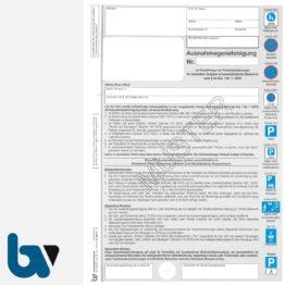 0/685-14 Ausnahmegenehmigung zum Parkausweis Parkerleichterungen Sonderregelung RP SH MV gelb Modell behinderte Menschen Durchschreibesatz DIN A4 2-fach | Borgard Verlag GmbH