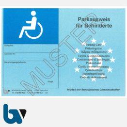 0/685-5.2 EU-einheitlicher Parkausweis Ausnahmegenehmigung Parkerleichterungen europaeisch blau Modell behinderte Menschen leicht DIN A6 VS