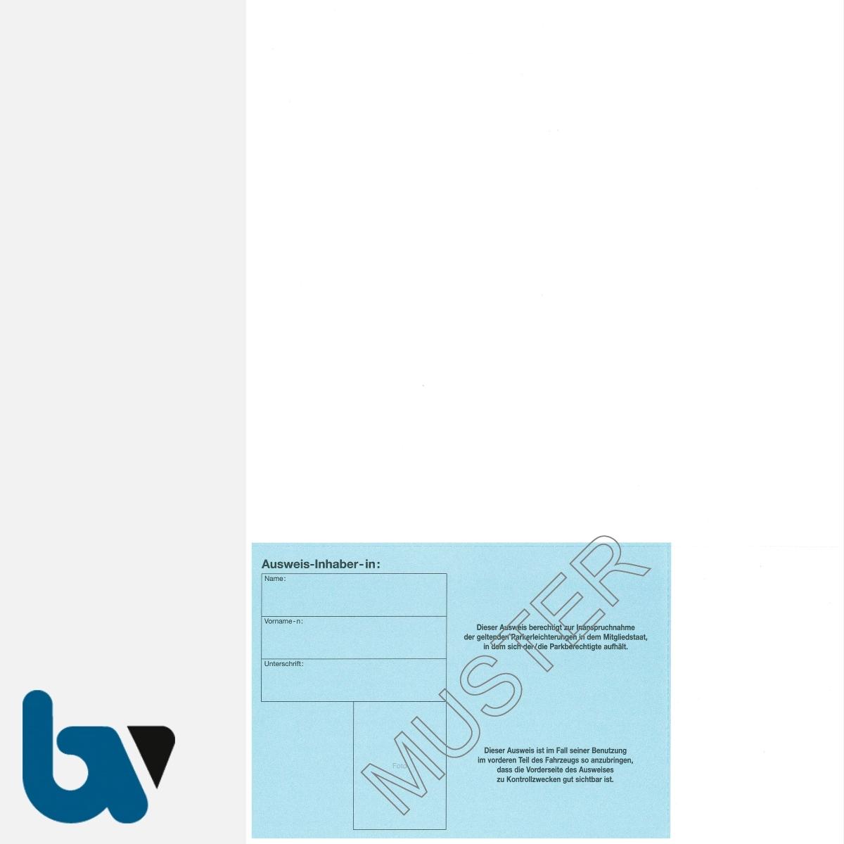 0/685-5.5 EU-einheitlicher Parkausweis Ausnahmegenehmigung Parkerleichterungen europäisch blau Modell behinderte Menschen perforiert zum Abtrennen DIN A4 RS | Borgard Verlag GmbH