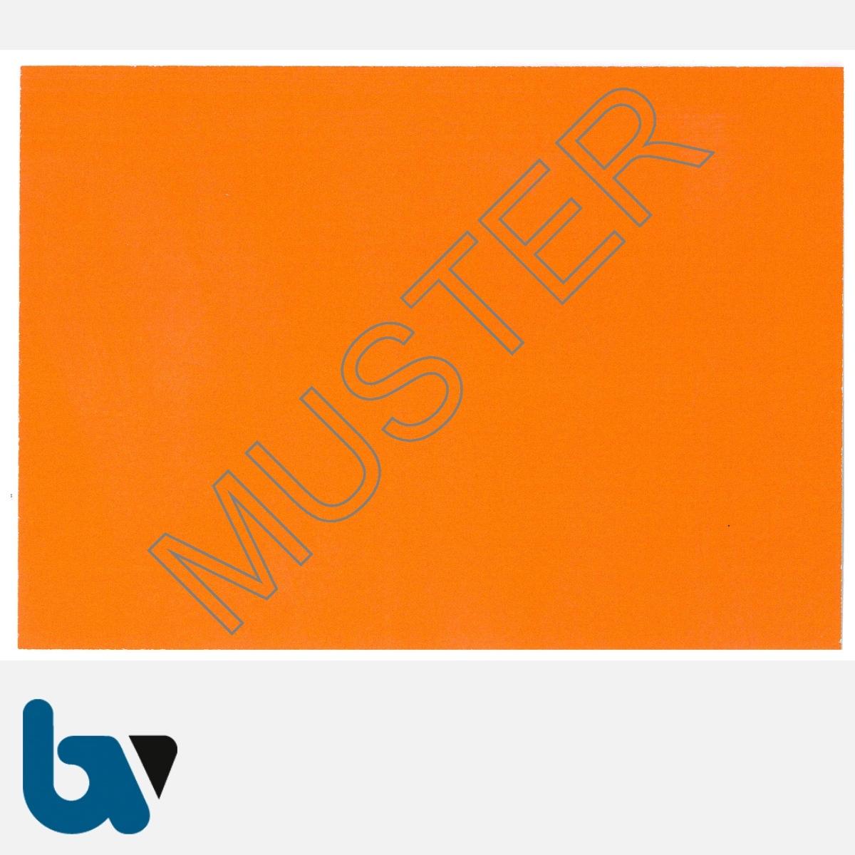 1/685-10 Parkausweis zur Ausnahmegenehmigung über Parkerleichterungen NRW orange Modell behinderte Menschen DIN A6 orange RS | Borgard Verlag GmbH