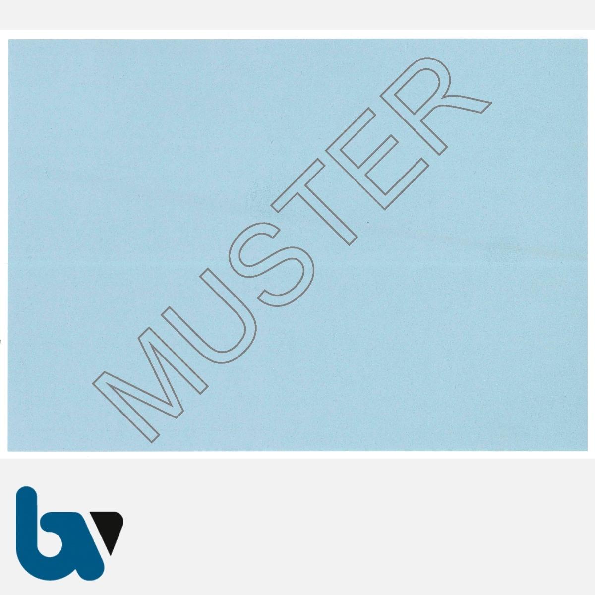 13/456-1 Fischereischein Thüringen blau Neobond Muster RS   Borgard Verlag GmbH