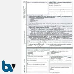 2/685-11 Antrag auf Erteilung einer Ausnahmegenehmigung Parkausweis Parkerleichterungen Sonderregelung RP SH MV gelb Modell behinderte Menschen DIN A4 4-fach | Borgard Verlag GmbH