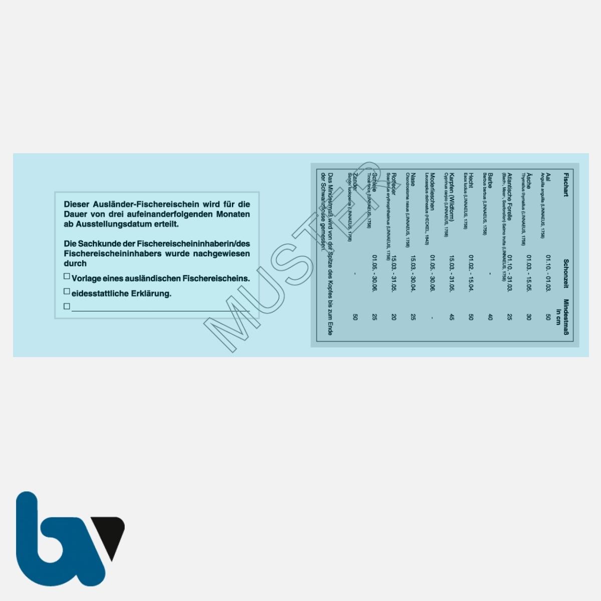 3/456-6 Ausländerfischereischein Hessen blau Neobond Muster RS   Borgard Verlag GmbH