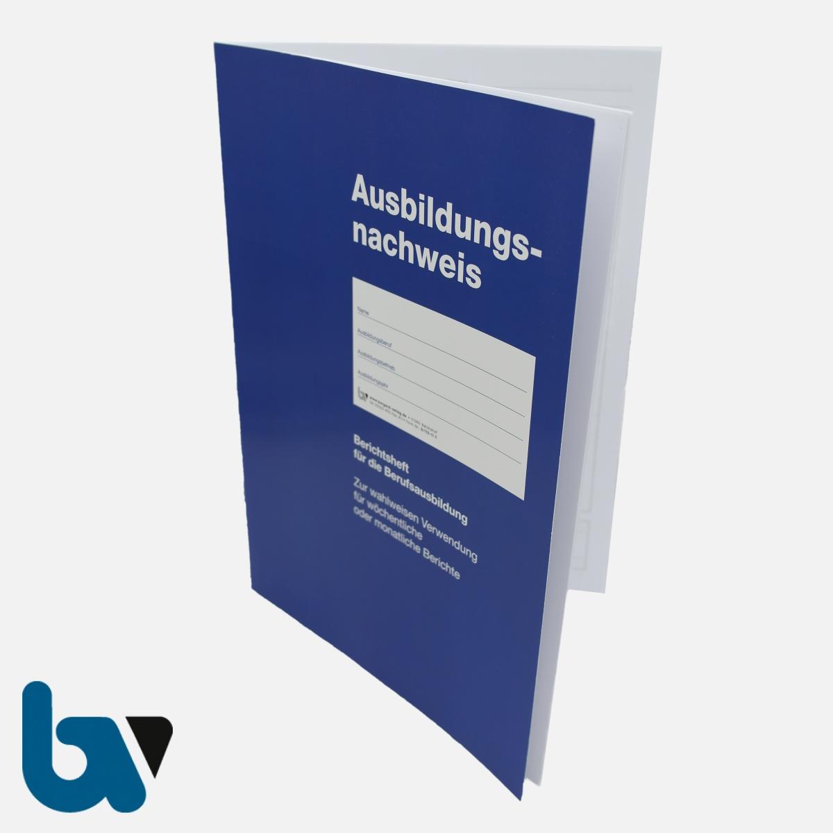 0/112-11 Ausbildungsnachweis Heft Bericht Beruf Ausbildung DIN A4 VS | Borgard Verlag GmbH