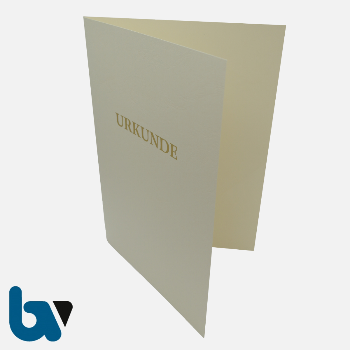 0/134-10 Urkundenhülle Creme Dokumente Goldprägung Überformat Einstecktasche Einlege DIN A4 VS 1 | Borgard Verlag GmbH
