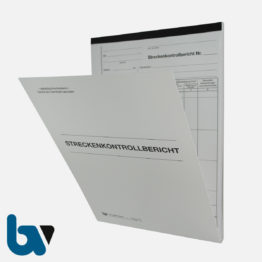 0/717-4 Streckenkontrollbericht Mängelmeldung selbstdurchschreibend Einschlagdeckel Durchschreibeschutz Schreibschutzdeckel perforiert DIN A4 Vorderseite   Borgard Verlag GmbH