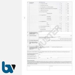 0/206-1 Erklärung Erhebung Zweitwohnungssteuer 2-fach selbstdurchschreibend DIN A4 Seite 2 | Borgard Verlag GmbH