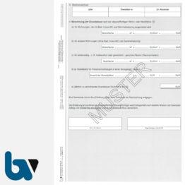 12/207-5 Aufforderung Erklärung Überprüfung Vorhanden Ersatzbemessung Grundsteuer Berechnung Hinweise 3-fach selbstdurchschreibend DIN A4 Seite 2 | Borgard Verlag GmbH