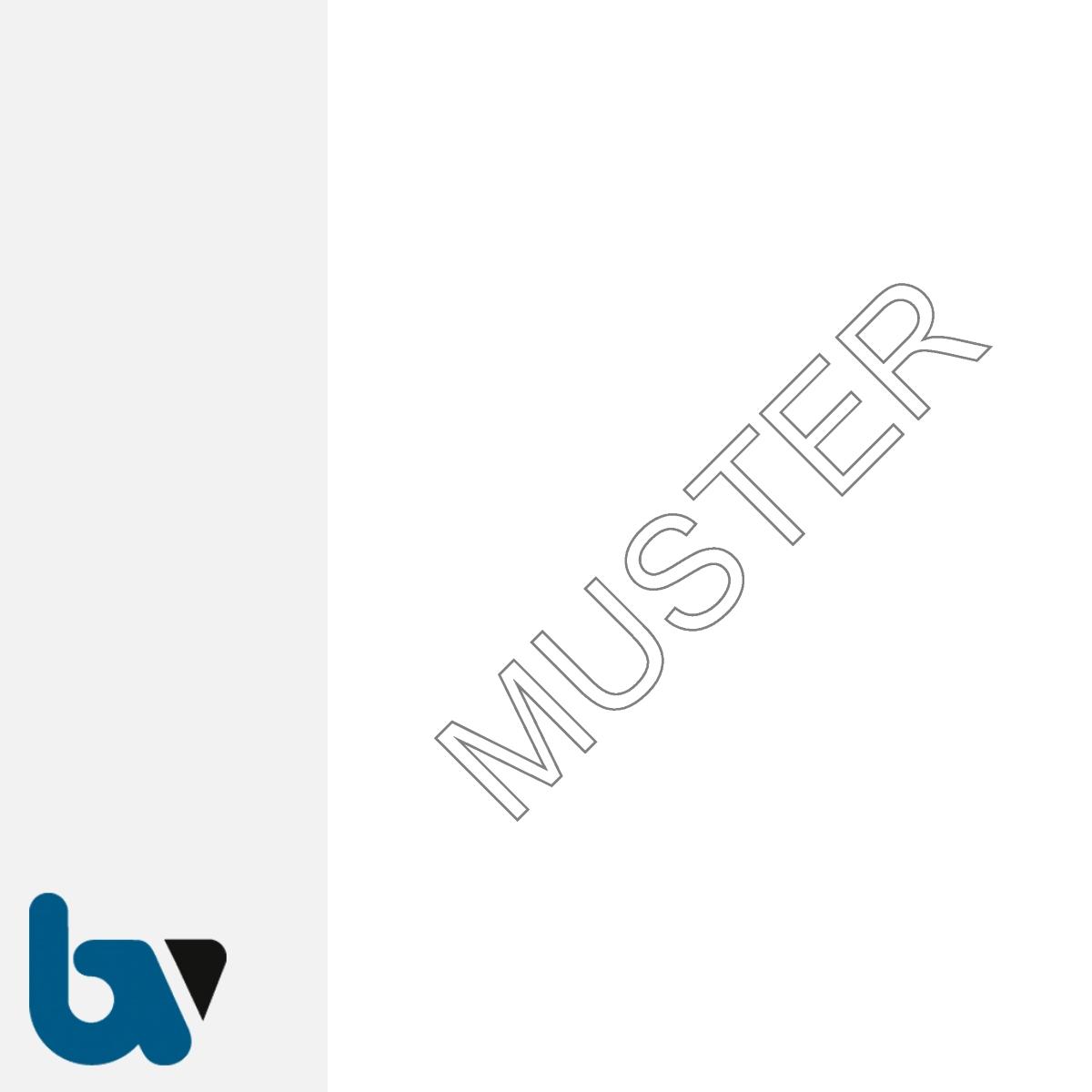 0/168-6u Urkundenpapier Standesamt Personenstand Urkunde Register Dokument ungelocht blanko 100gr Stammbuch DIN A4 | Borgard Verlag GmbH
