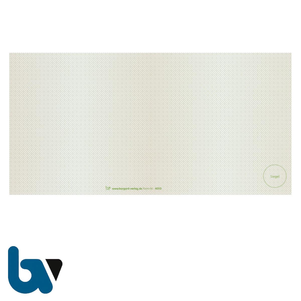 401 D Beiblatt Zulassungsbescheinigung Teil 1 Fahrzeugschein Pretex Guilloche zweifarbig grün braun 210 105 | Borgard Verlag GmbH