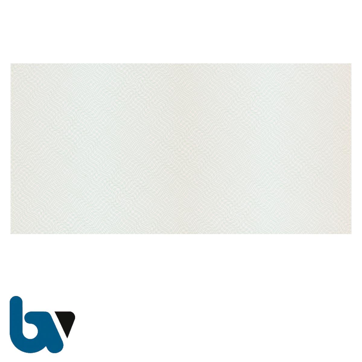 401 TW Beiblatt Zulassungsbescheinigung Teil 1 Fahrzeugschein Pretex Guilloche zweifarbig grün braun 210 105 | Borgard Verlag GmbH