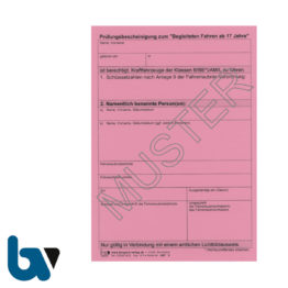 407 Prüfungsbescheinigung Begleitet Fahren ab 17 Jahren §48a Anlage 8b FeV Fahrerlaubnis Verordnung Neobond rosa DIN A6 | Borgard Verlag GmbH