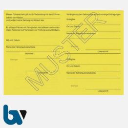 0/487-1 Führerschein zur Fahrgastbeförderung Taxi Mietwagen Personenkraftwagen gelb Neobond DIN A6 Rückseite | Borgard Verlag GmbH